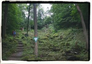 GF3_01_Wasserfall